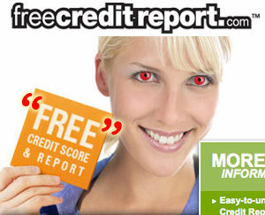 free credit report online reviews